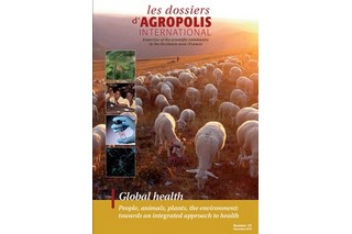 Discover the English version of the last issue of the series 'Les dossiers d'Agropolis International' : 'Global health - People, animals, plants, the environment : towards an integrated approach to health' n° 25 (52 pages, December 2019)